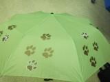 deštníky2